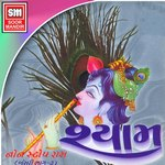 Shyam - Non Stop Raas