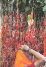 Ambaji - The Biggest Shakti Tirth